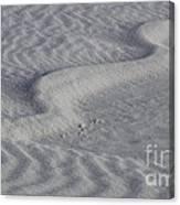 Sand Patterns 2 Canvas Print
