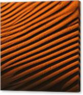 Sand Ripple Canvas Print