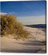 Sand Shrub 1 Canvas Print