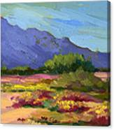 Santa Rosa Mountains In Spring Canvas Print