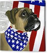 Sarg Canvas Print