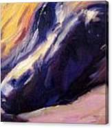 Sassie Canvas Print
