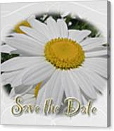 Save The Date Greeting Card - White Daisy Wildflower Canvas Print
