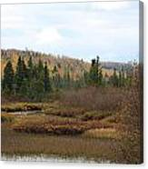 Sawtooth Swamp Canvas Print