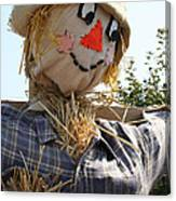 Scarecrow Farmer Canvas Print