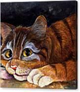 Scaredy Cat Canvas Print