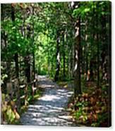 Scenic Pathway Canvas Print