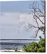 Scenic View At Emerson Point Canvas Print
