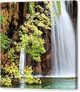 Scenic Waterfall In Autumn Canvas Print