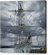 Schooner In Halifax Harbor Canvas Print