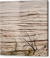 Sculpted By Nature Canvas Print
