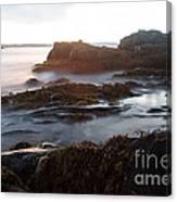 Sea At Sunset Canvas Print