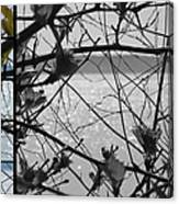 Sea Beyond The Branches Canvas Print