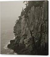 Sea Cliff At Quoddy Head  Canvas Print