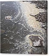 Sea Foam And Algae Canvas Print