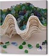 Sea Glass In Clam Shell - No 1 Canvas Print