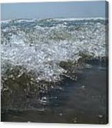 Sea Orchestra Canvas Print