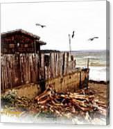 Sea Shanty Canvas Print