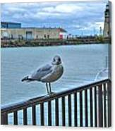 Seagull At Lighthouse Canvas Print