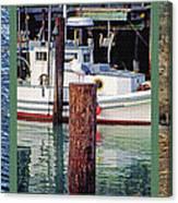 Seagull Triptych Canvas Print
