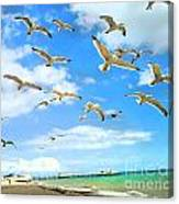 Seagulls At Worthing Sussex Canvas Print