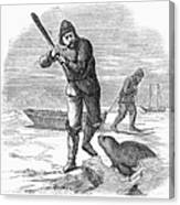 Seal Hunting, 1867 Canvas Print