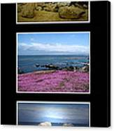 Seascape Triptych Canvas Print