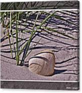 Seashore Scene Canvas Print