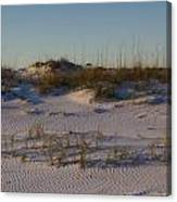 Seaside Dunes 4 Canvas Print