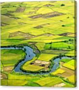 Season Grain Canvas Print