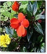 Seasonal Bouquet Canvas Print
