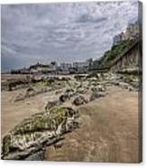 Seaweed Rocks Tenby Canvas Print