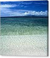 Secluded White Sands Beach Canvas Print