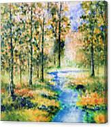 Secret Rivers Canvas Print