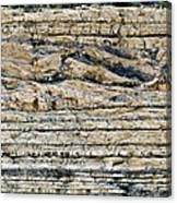Sedimentary Rock Slumping Canvas Print