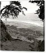 Sentinels View Of The Ocean Black And White Canvas Print