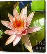 Serene Pink Waterlily  Canvas Print