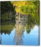 Serene Reflection Canvas Print