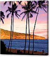 Serene Waimea Bay Canvas Print
