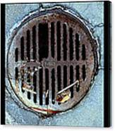 Sew Sewer Sewest Canvas Print