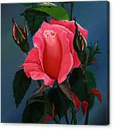 Shades Of Beauty Canvas Print