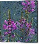 Shades Of Purple Canvas Print