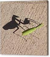 Shadow Mantis Canvas Print