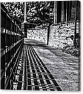 Shadow Walk Canvas Print
