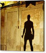 Shadow Wall Statue Canvas Print