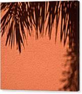 Shadows Of A Palm Canvas Print