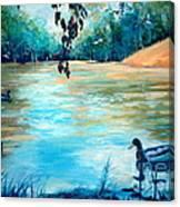 Shady Springs Pond Canvas Print