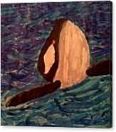 Shamu Canvas Print