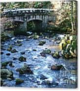 Shaugh Prior Bridge Canvas Print