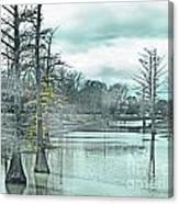 Shaw Mississippi Canvas Print